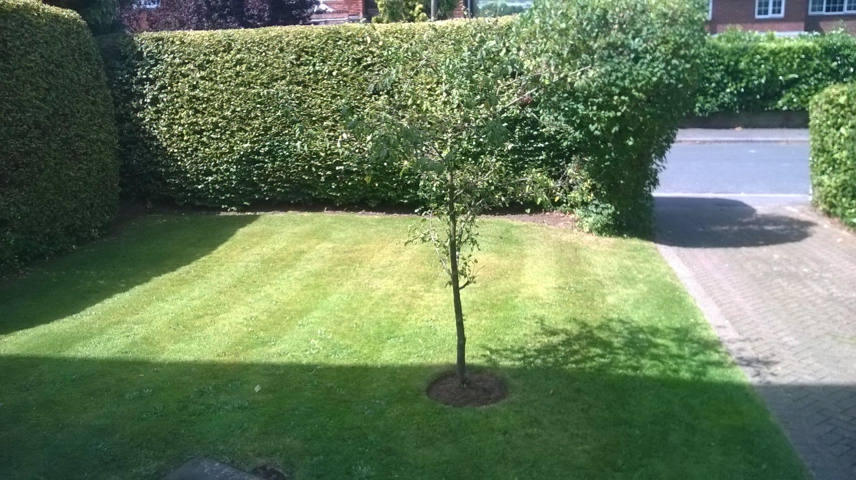 rjs garden care